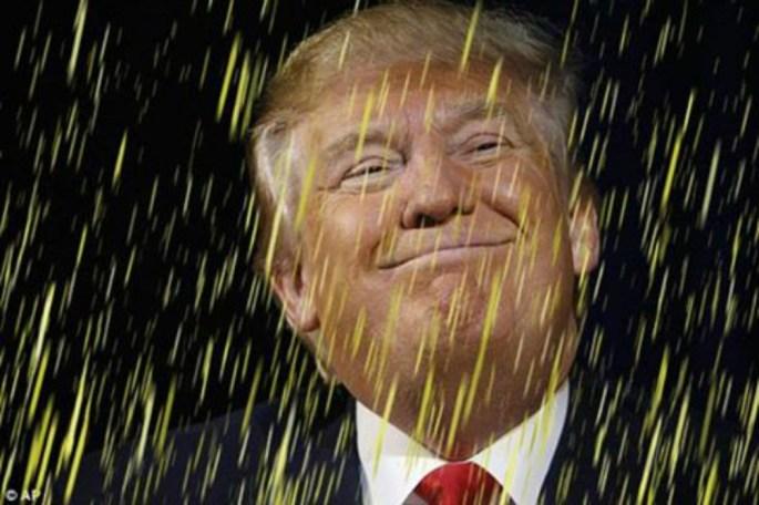 Donald_Trump_pee_pee.jpg